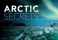 Wild Seas: Arctic Secrets Series
