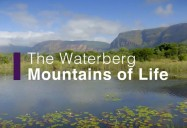 The Waterberg - Mountains of Life: Africa's Wild Horizons Series