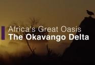 Africa's Great Oasis - The Okavango Delta: Africa's Wild Horizons Series