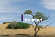 The Kalahari: Africa's Wild Horizons Series