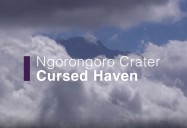 Ngorongoro Crater - Cursed Haven: Africa's Wild Horizons Series