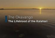 The Okavango - Lifeblood of the Kalahari: Waterworld Africa Series