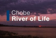 Chobe: River of Life: Waterworld Africa Series