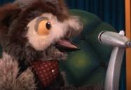 Creepy Crawly Feast: ZooMoos Wild Friends Series
