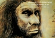 Brains: Origins of Us