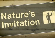 Nature's Invitation