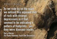 British Columbia's Dinosaur Frontier: Dino Trails Series