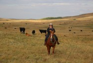 Saskatchewan and Manitoba: Seeing Canada (Season 2)