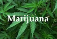What Do You Know About Marijuana?: Drug Class Series (Season 1)