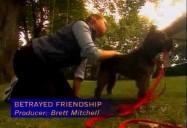 Betrayed Friendship (W5)
