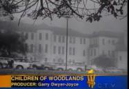 The Children of Woodlands (W5)