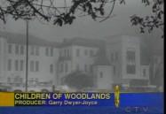 The Children of Woodlands - Update (W5)