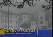 The Children of Woodlands - Update (W5)