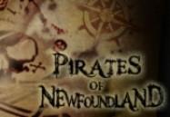 Pirates of Newfoundland (W5)