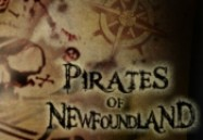 Pirates of Newfoundland (W5)