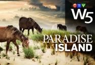 Paradise Island: W5