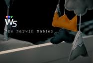 The Barwin Babies: W5
