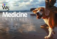 Medicine Unleashed: W5