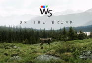 On the Brink (Caribou): W5