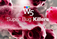 Super Bug Killers: W5