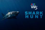 Shark Hunt: W5