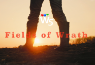 Fields of Wrath: W5