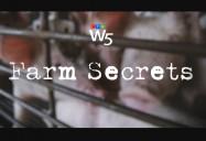 Farm Secrets: W5