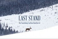 Last Stand: The Vanishing Caribou Rainforest