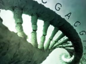 DNA, Superdoctor