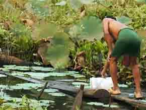 L' eau : une ressource, un défi: Les Artisans du changement