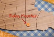 Cooking Outside The Box (Episode 9 - Riding Mountain National Park, MB): Kid Diners Series