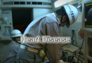 Heart Disease - Flaws in a High Performance Pump: Origins Of Disease: An Evolutionary Perspective