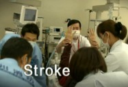Stroke - The Price of Rapid Evolution: Origins Of Disease: An Evolutionary Perspective