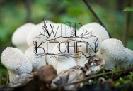 Wild Kitchen Series