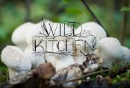 Wild Kitchen Series