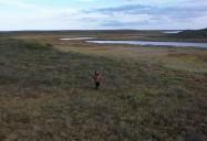 Cheeta Gruban - Living in the Tundra: Northern/Her Series