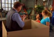 Thinking Inside the Box: The Prime Radicals (Season 1)