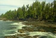 Juan de Fuca Marine Trail - BC (Episode 20)