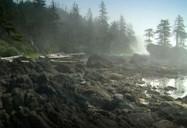 Cape Scott Provincial Park - BC    (35/70)
