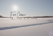 Fox Chaser: A Winter on the Trapline