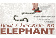 How I Became An Elephant