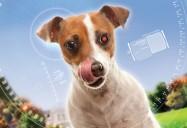 A.R.C.H.I.E. Artificial Robotronic Canine Hyper-Intelligence Experiment