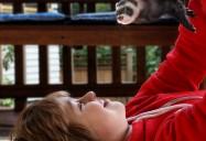 Jake & Jasper: A Ferret Tale