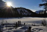Call of the Yukon Series