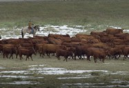 Waterton Biosphere Reserve, Alberta (Episode 5): Striking Balance Series 1