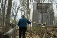 Mont Saint-Hilaire Biosphere Reserve, Quebec (Episode 6): Striking Balance Series 1