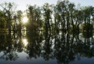 Lac Saint-Pierre Biosphere Reserve, QC