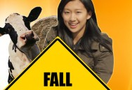 Fall Safety