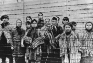 The Liberation of Auschwitz: The 70th Anniversary