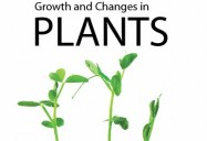 Growth and Changes in Plants